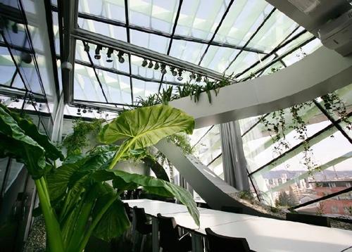 проект зимнего сада на застекленной террасе