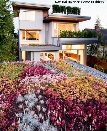 экстенсивное и интенсивное озеленение крыш
