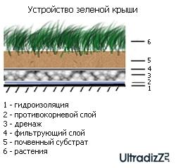 послойное устройство зеленой крыши