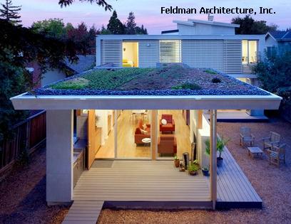 зеленая крыша частного дома