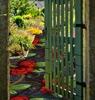 мозаика в частном дворе