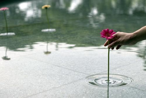 прозрачные плавающие вазы для маленьких цветов