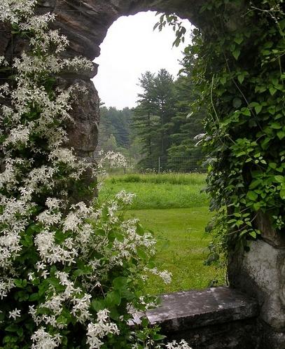 каменная арка как эффектная рама для ландшафта