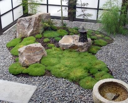 использование мха в ландшафтном дизайне