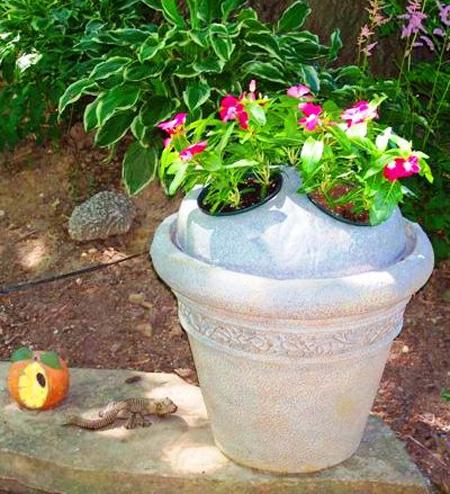 использование плавающей клумбы в вазоне