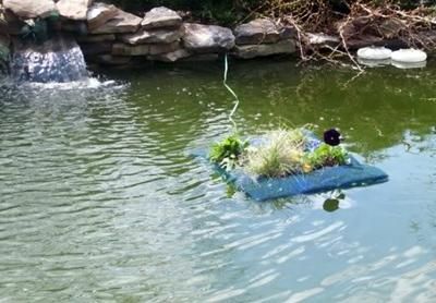 фиксация положения клумбы в пруду