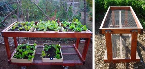 мобильные каркасы для овощных грядок