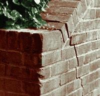 разрушение подпорной стены корнями деревьев