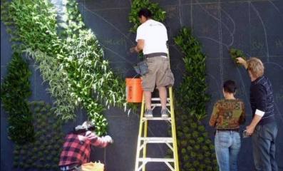 посадка растений в фетровые карманы