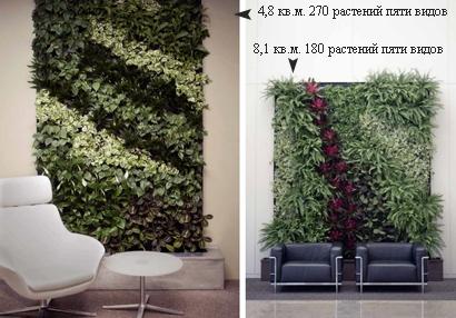 примеры вертикального озеленения офисов