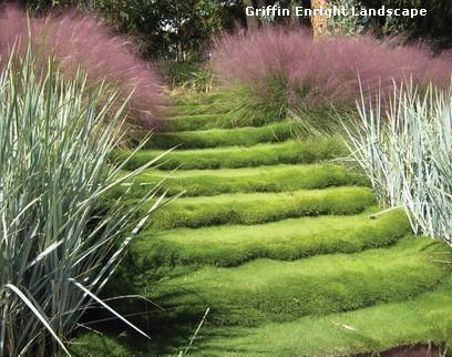 стальная садовая лестница с травяными ступенями