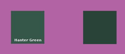 охотничий зеленый в сочетании с сияющей орхидеей