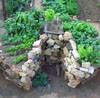 сад в стиле замочной скважины