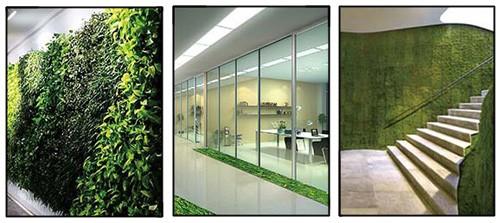 варианты использования ленточного вертикального озеленение