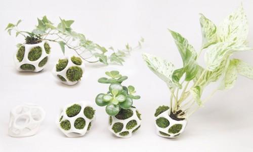 ажурные контейнеры для мха и растений