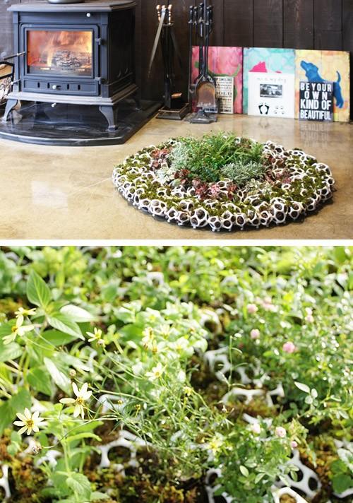 зеленый ковер из ячеек с растениями