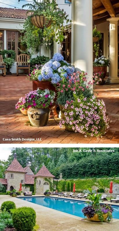 композиции горшечных цветов в в дизайне дворов