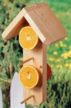 деревянная кормушка с кусочками фруктов