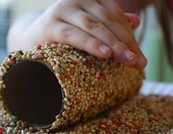 кормушка для зернового корма из картонного рулона
