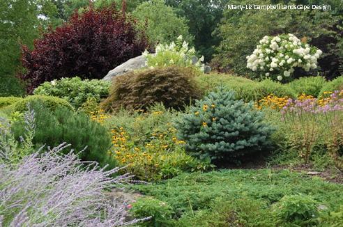 ландшафтная композиция с хвойными, лиственными и цветами