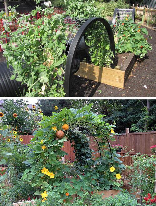 низкие арочные огороды