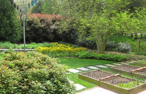 смешанный сад с декоративными огородными грядками