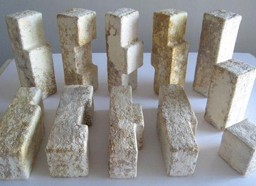грибные строительные блоки из мицелия