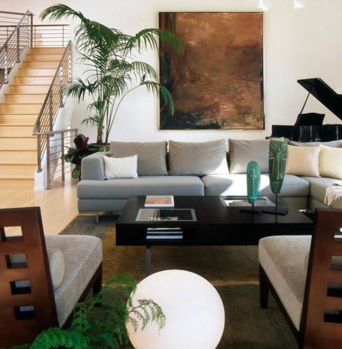 фото гостиной с естественным освещением