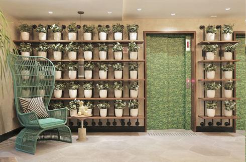 современный стиль использования горшечных растений в интерьере
