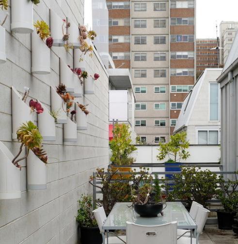 украшение фасадами цветами в контейнерах