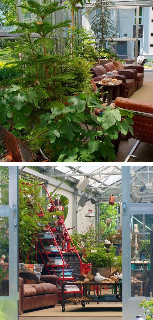 растения в стеклянном павильоне